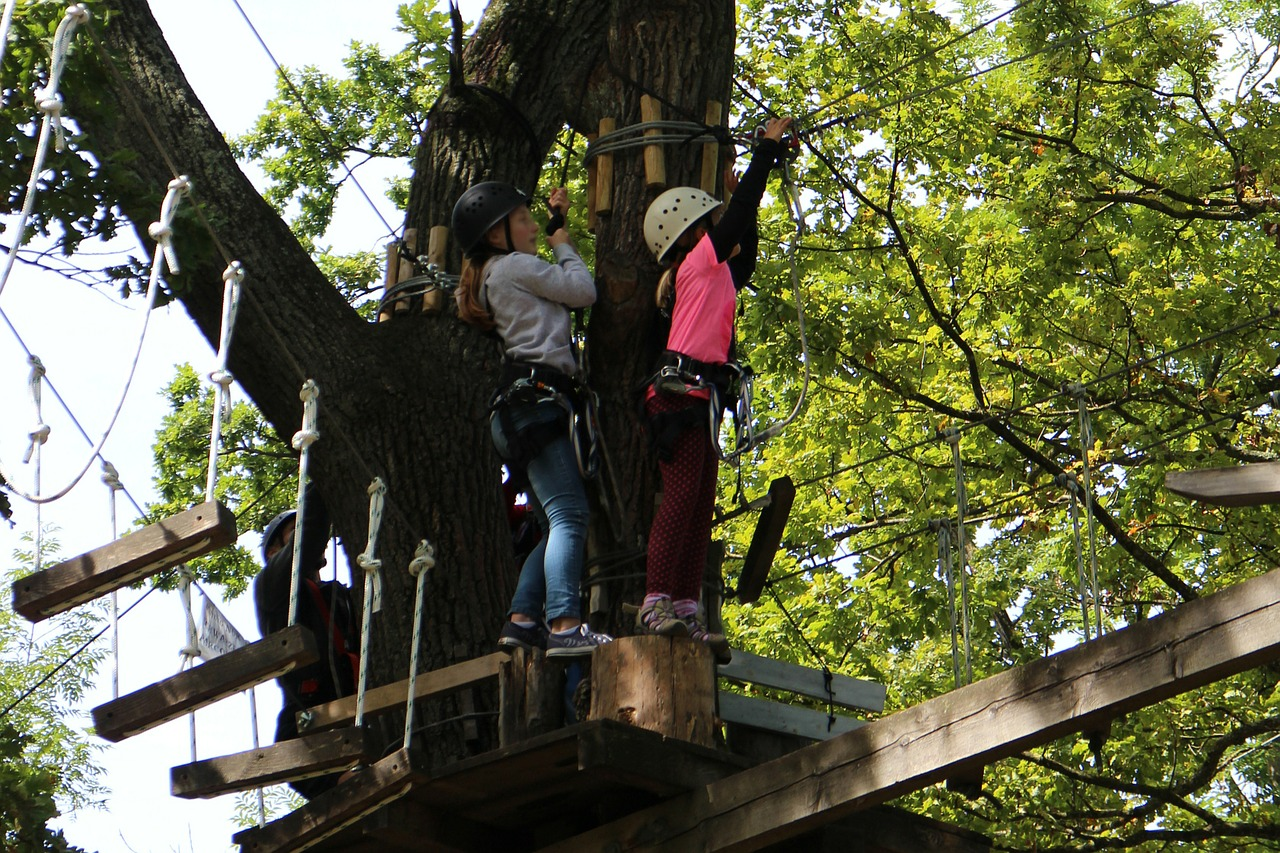 Oyama Zipline Forest Adventure