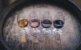 wine pairing lineup